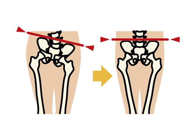 骨盤と基礎代謝の関わり